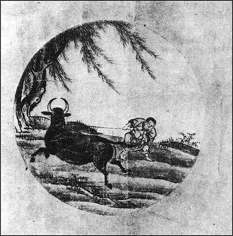 cogiendo al toro