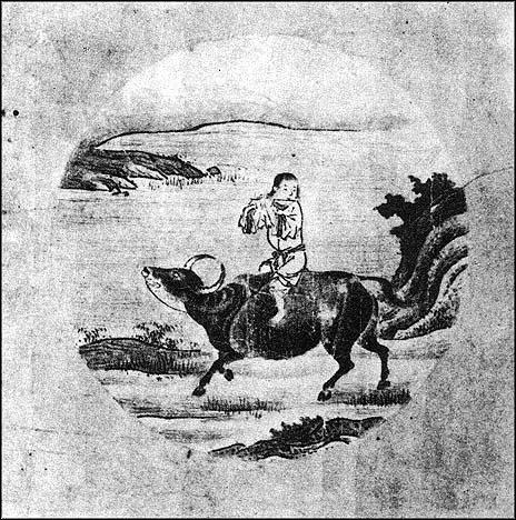 llevando al toro a casa